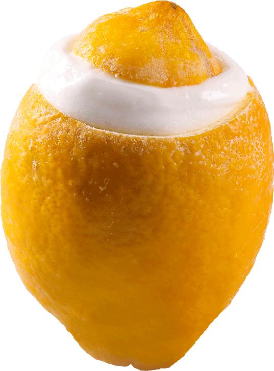 Limone - Monoporzioni - Premiata Gelateria Michielan