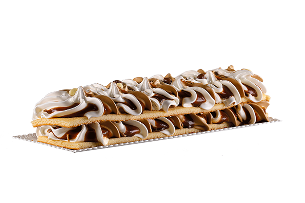 Trancio Torta Gelato - Premiata Gelateria Michielan