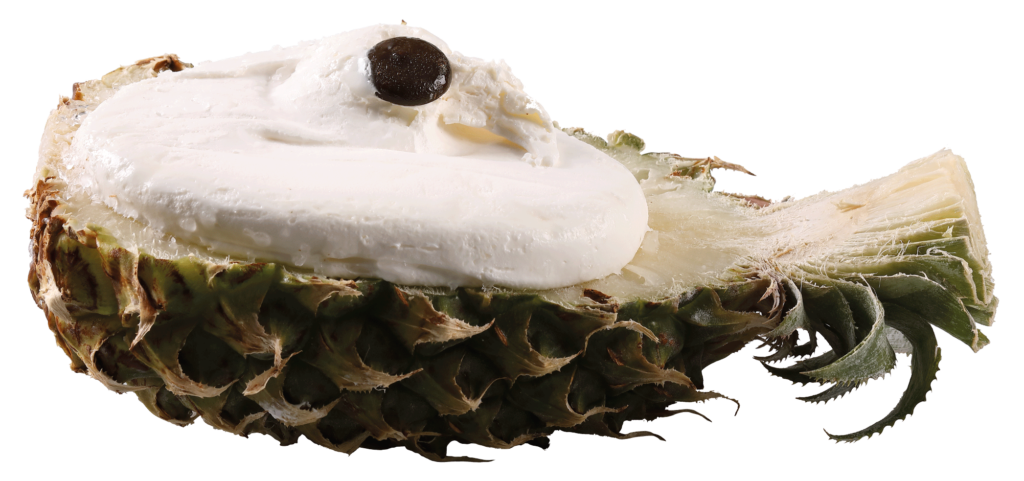 Ananas - Monoporzioni - Premiata Gelateria Michielan